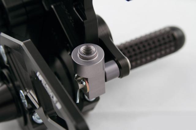 DRIVENドリブンD-Axisバックステップエキセントリックカラー:シルバーステップタイプ:GPスタイルDAYTONA675[デイトナ]