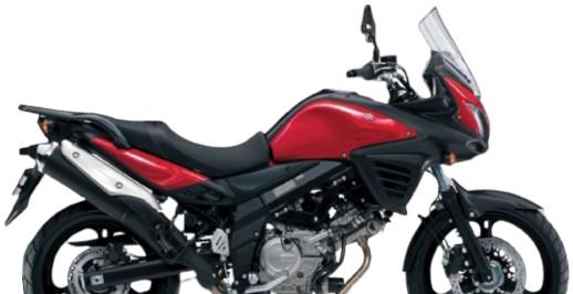 Dimotiv ディモーティヴ コアガード ラジエータープロテクタースタンダード(Radiator Protector - Standard) ネットカラー:カラー:グリーン Vストローム650