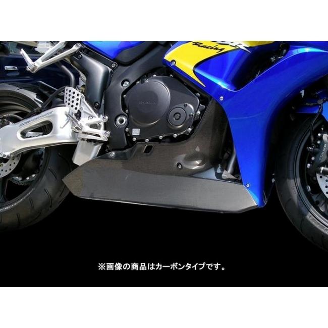 TSR テクニカルスポーツレーシング アンダーカウル カーボン CBR1000RR FIRE BLADE [ファイアブレード]