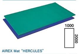 酒井医療 ヘラクレス(リハビリテーション・トレーニングマット) 2000(L)×1000(W)×25(H)mm 【送料・代引き手数料無料】