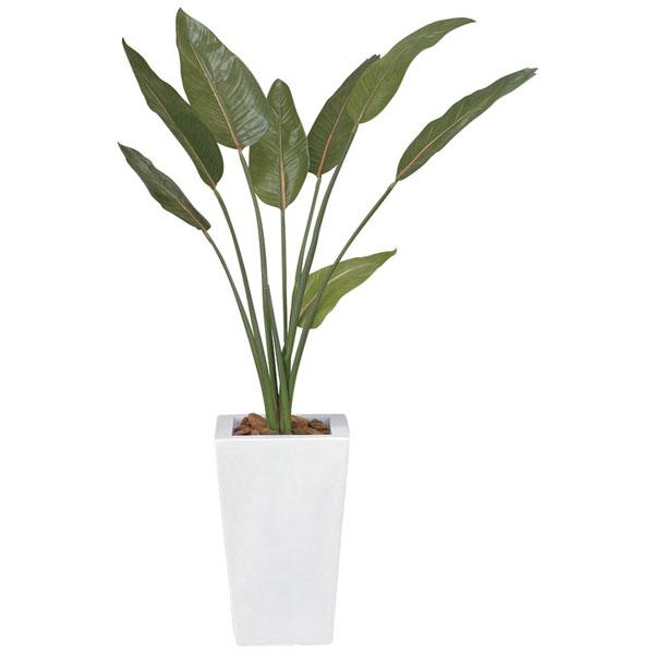 アートグリーン 人工観葉植物 光触媒 光の楽園 ストレチア1.2 132E330 2020年版