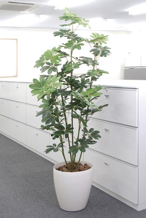 アートグリーン 人工観葉植物 光触媒 光の楽園 カポック1.8 158G350 2020年版