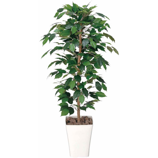 アートグリーン 人工観葉植物 光触媒 光の楽園 フィカスベンジャミン1.2 189A170 2020年版