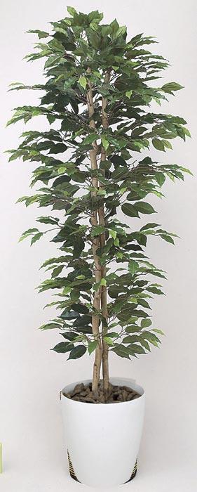アートグリーン 人工観葉植物 光触媒 光の楽園 ベンジャミンスリム1.8 357A330 2020年版