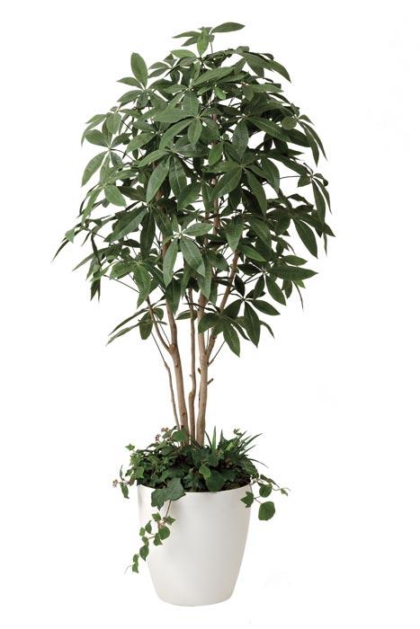 アートグリーン 人工観葉植物 光触媒 光の楽園 パキラ1.8植栽付 412F500 2020年版