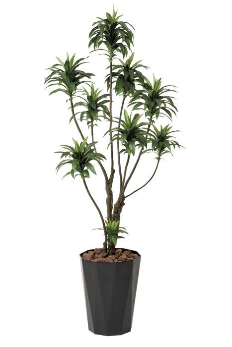 アートグリーン 人工観葉植物 光触媒 光の楽園 ドラセナコンパクタ1.6 416A250 2020年版