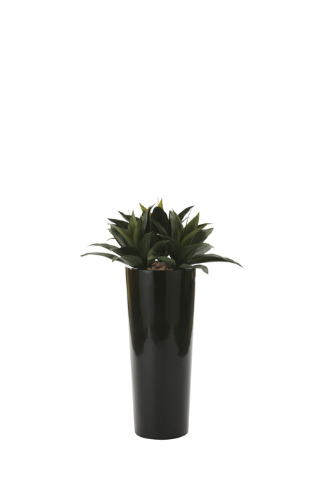 アートグリーン 人工観葉植物 光触媒 光の楽園 ドラセナ 726A600 2020年版