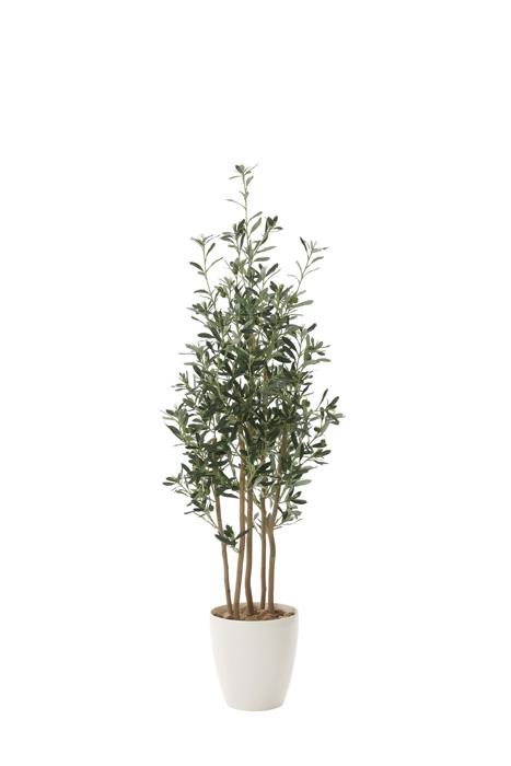 アートグリーン 人工観葉植物 光触媒 光の楽園 オリーブ1.6 731A330 2020年版