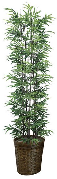 アートグリーン 人工観葉植物 光触媒 光の楽園 黒竹1.8(幹:天然黒竹) 775A450 2020年版