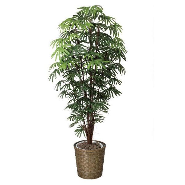 アートグリーン 人工観葉植物 光触媒 光の楽園 シュロチク1.8 鉢変更 501F570 2020年版