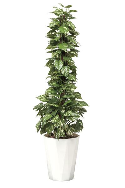 アートグリーン 人工観葉植物 光触媒 光の楽園 ポトス1.5 509A300 2020年版