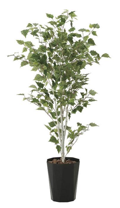 アートグリーン 人工観葉植物 光触媒 光の楽園 白樺1.4 607A270 2020年版