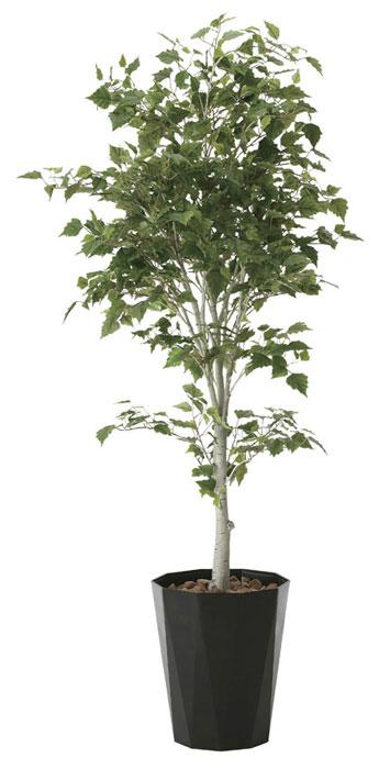 アートグリーン 人工観葉植物 光触媒 光の楽園 白樺1.9 608A580 2020年版