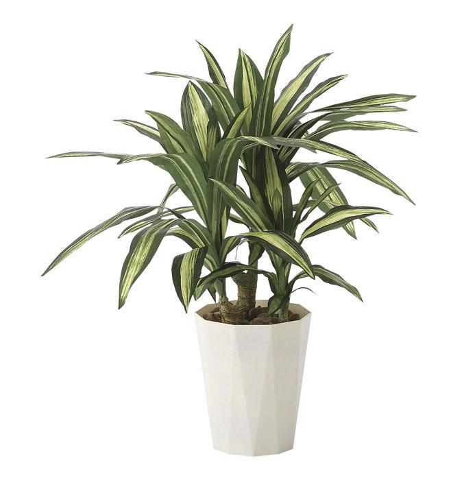アートグリーン 人工観葉植物 光触媒 光の楽園 幸福の木70 628A130 2020年版