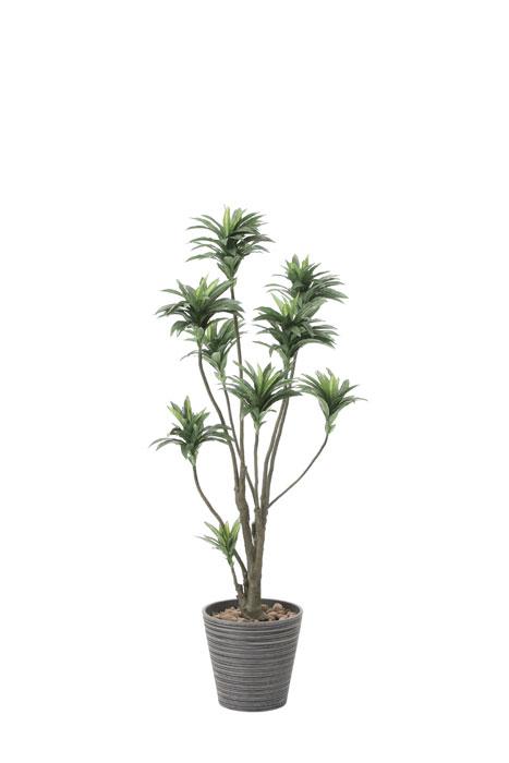 アートグリーン 人工観葉植物 光触媒 光の楽園 ドラセナ1.5 808A250 2020年版