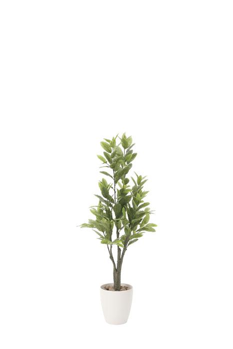 アートグリーン 人工観葉植物 光触媒 光の楽園 レモン1.25 817A200 2019年版