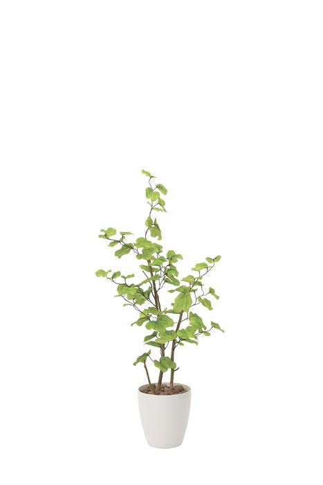 アートグリーン 人工観葉植物 光触媒 光の楽園 バウヒニア1.3 821A220 2020年版