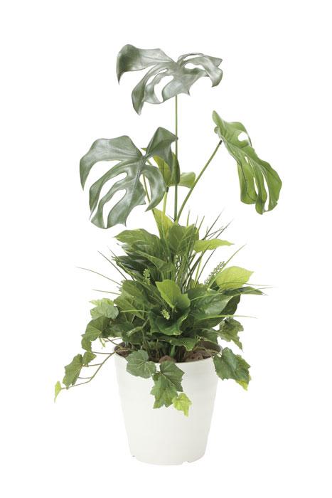 アートグリーン 人工観葉植物 光触媒 光の楽園 モンステラ90植栽付 872A170 2020年版