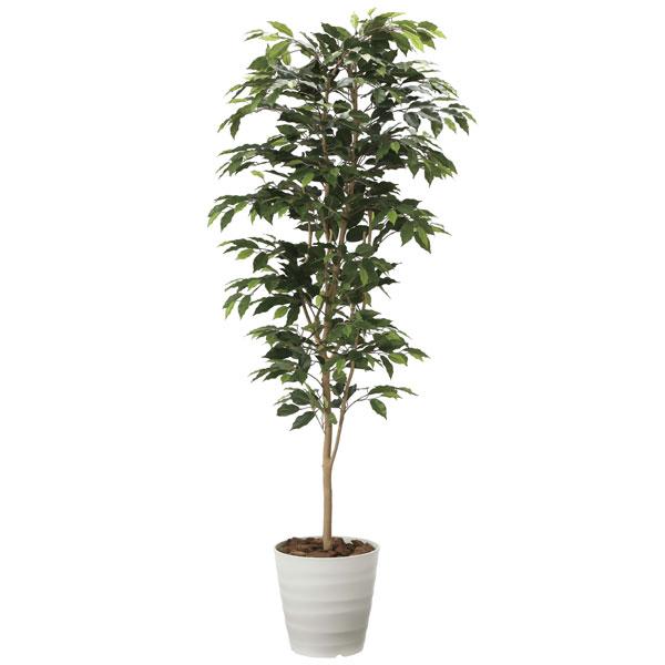 アートグリーン フェイクグリーン 人工観葉植物 光触媒 光の楽園 ベンジャミン1.8 2014A300 2020年版