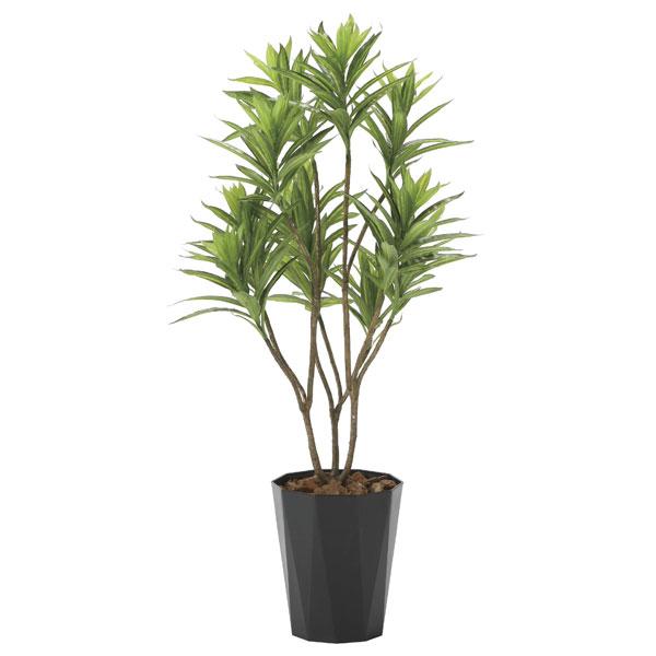 アートグリーン フェイクグリーン 人工観葉植物 光触媒 光の楽園 フレッシュドラセナ1.2 2018A220 2020年版