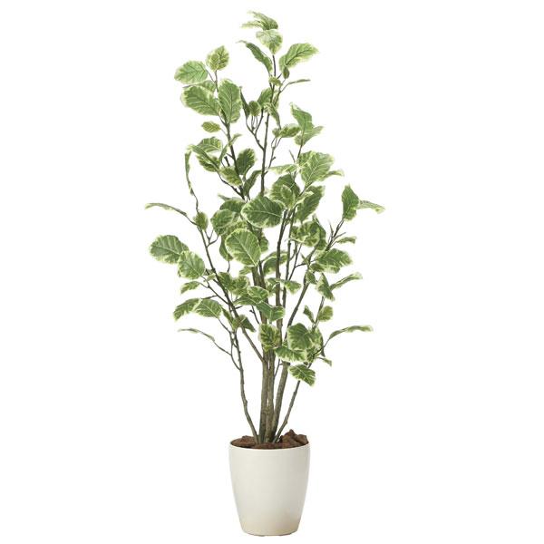 アートグリーン フェイクグリーン 人工観葉植物 光触媒 光の楽園 ポリシャス1.15 2028A180 2020年版