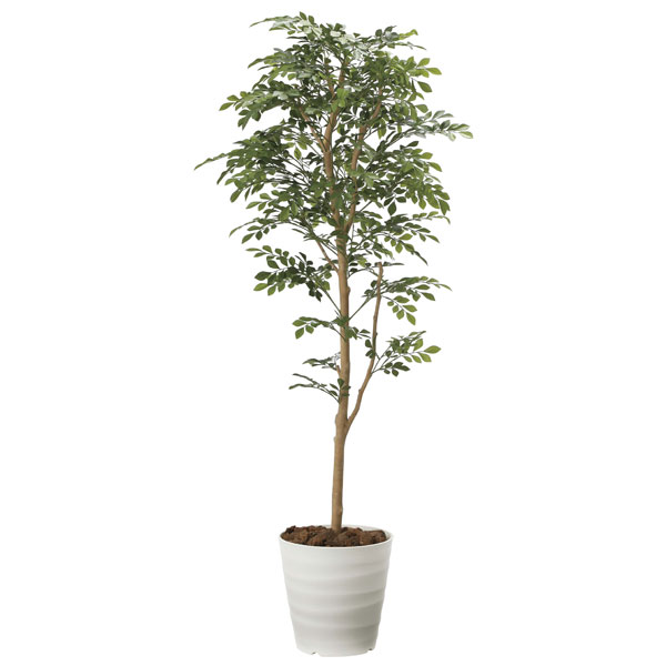 アートグリーン フェイクグリーン 人工観葉植物 光触媒 光の楽園 トネリコ 1.6 2107A300 2020年版