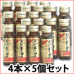 【第3類医薬品】【即納】 《セット販売》 滋養強壮 新エゾエースH (50ml×4本入)×5個セット  【送料無料】 【smtb-s】 ウェルネス