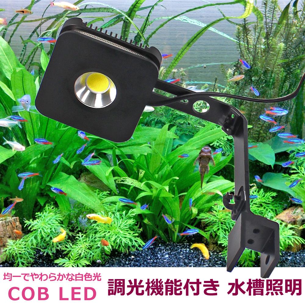 【即日発送】水槽照明 調光機能付き 白色 COB LED 45cm-60cm水槽用 アクアリウムライト 観賞魚 サンゴ 水草:WELLVIE-STORE