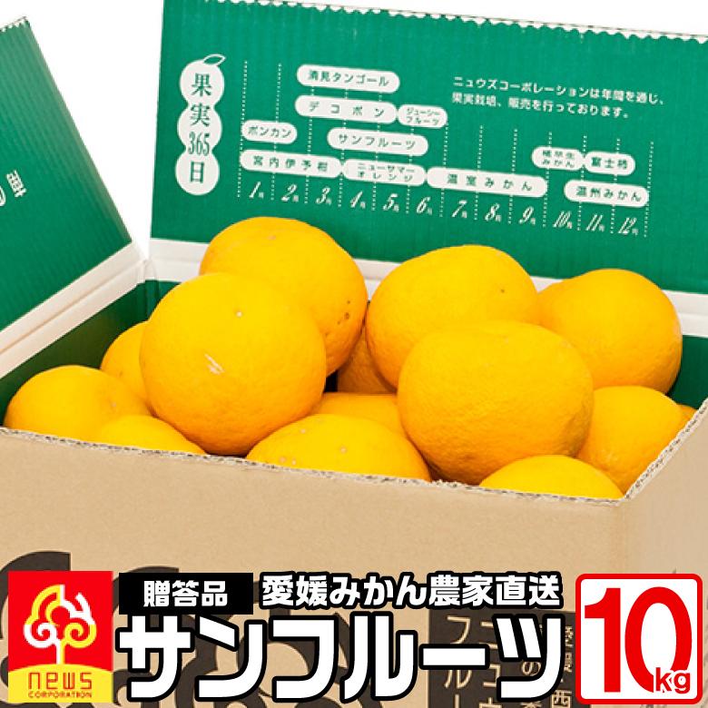 贈答用 サンフルーツ 10kg 国産 愛媛産 無添加 南の果樹園 ニュウズ