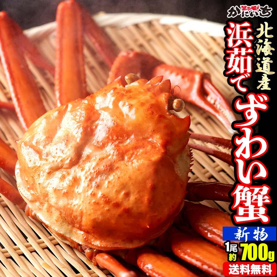 ずわい蟹 1尾 (約700g) AS-1 浜茹で 北海道産 ずわいがに ズワイガニ 送料無料 お中元 ギフト
