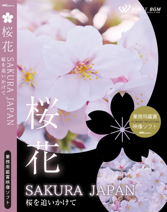【4K撮影 4Kデータ・業務用ヒーリングビデオ】桜花 -SAKURA JAPAN- 桜を追いかけて(24分)♪リラックス音楽と動画 店舗BGMやイベントに 著作権フリー音楽 ★ネコポスは2枚迄!3枚以上は宅急便を選択ください!