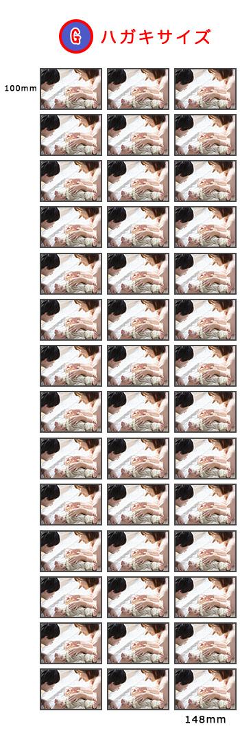 納得できる割引 ホワイトボード写真 ハガキサイズ42枚(写真1種類)【団体購入におすすめ】【切手を貼って郵便で出せます】, サカドシ 47cc5506