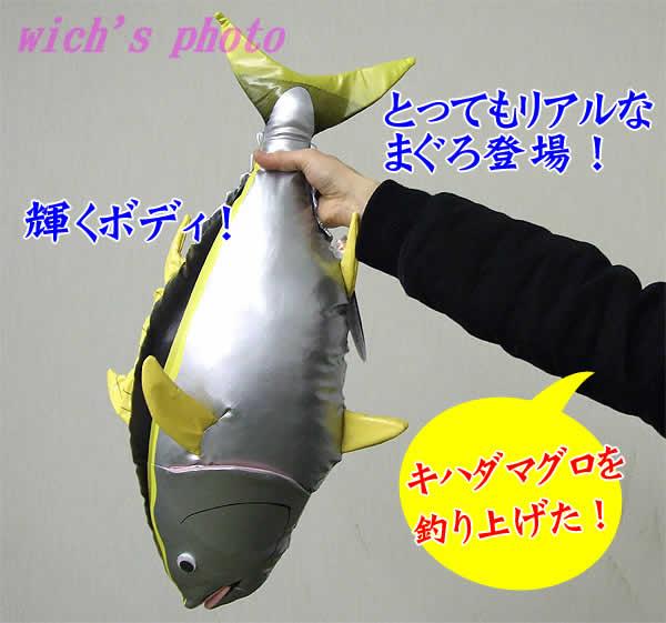 真正的毛絨金槍魚 (黃鰭金槍魚)