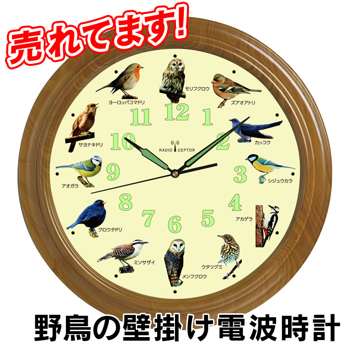 wide Rakuten Global Market Clock hanging Bird Bird wallmounted