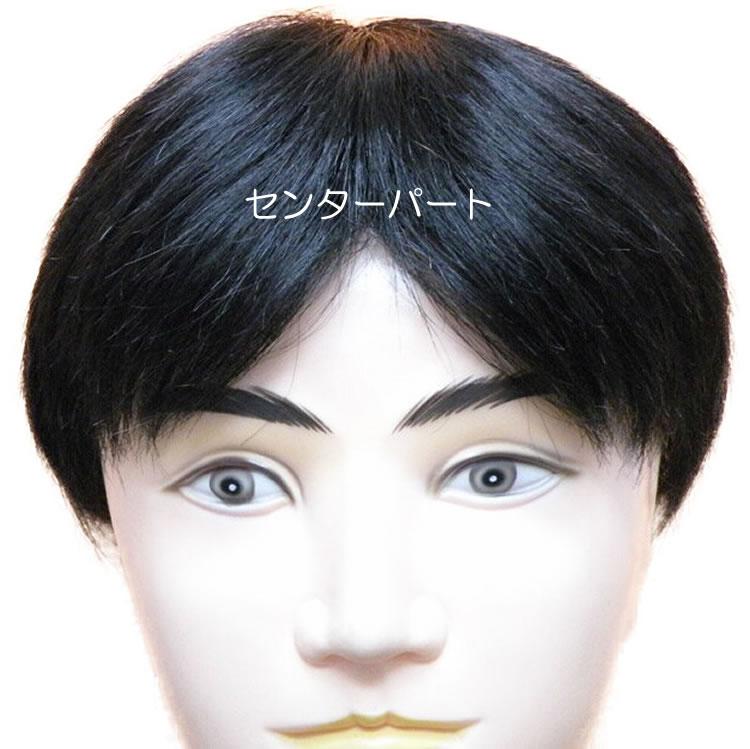 【人気商品】 即使用できるカット済み男性かつら、センターパート前後20cm×左右18cm。即日発送致します。耐熱人工毛と人毛のミックス, 名寄市:e2ee98cc --- fabricadecultura.org.br