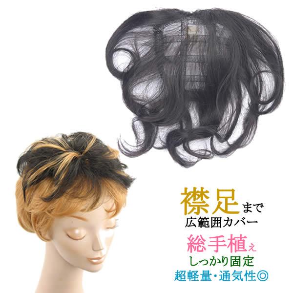 ウィッグ かつら ポイントウィッグ 増毛 総手植え 人気 簡単固定 白髪隠し tk4