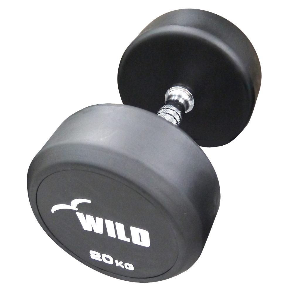 固定式ダンベル 20kg WF[WILD FIT ワイルドフィット] 送料無料 ダンベル ウエイト 筋トレ トレーニング 腹筋 背筋 ベンチプレス ジム 鉄アレイ