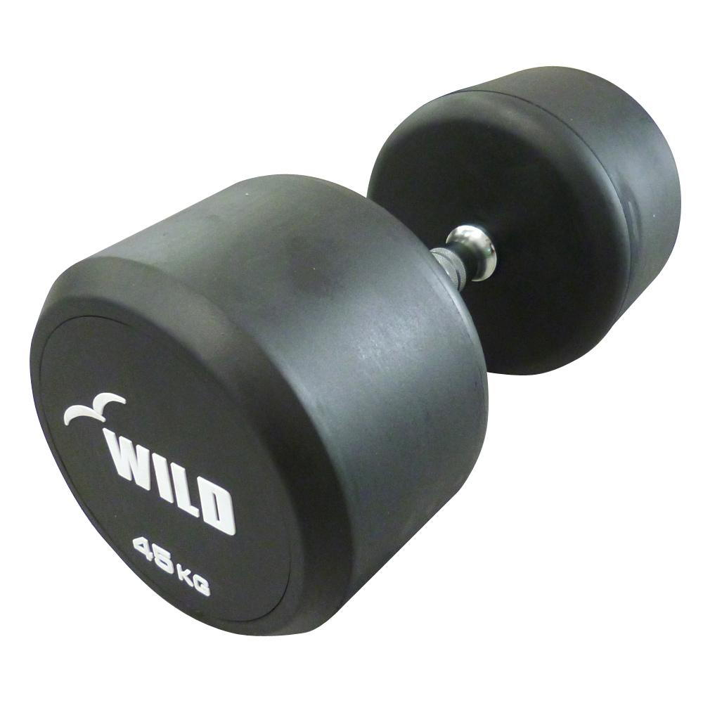 固定式ダンベル 45kg WF[WILD FIT ワイルドフィット] 送料無料 ダンベル ウエイト 筋トレ トレーニング 腹筋 背筋 ベンチプレス ジム 鉄アレイ