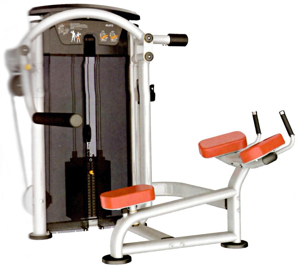 【送料無料】グルート(295ポンド)[WILD FIT ワイルドフィット]ダンベル・トレーニングマシン・筋トレ・格闘技用品のワイルドフィット
