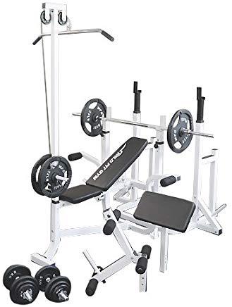 マルチトレーニングジムセット アイアン100kg[WILD FIT ワイルドフィット] 送料無料 バーベル ベンチプレス トレーニング ウエイト プレート スクワット 大胸筋 腹筋