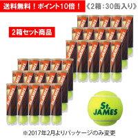 【2箱セット商品】ダンロップ [DUNLOP] テニスボール St.JAMES(セントジェームス)(1缶4球入/30缶/120球※10ダース)