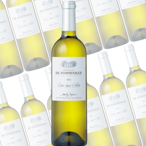 シャトー・ド フォントニーユ/シャトー元詰  750ml×12本(白ワイン)