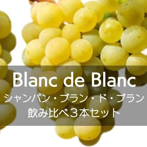ワインホリックの厳選ワインセット シャンパン、ブラン・ド・ブラン飲み比べ3本セット【ワインセット】