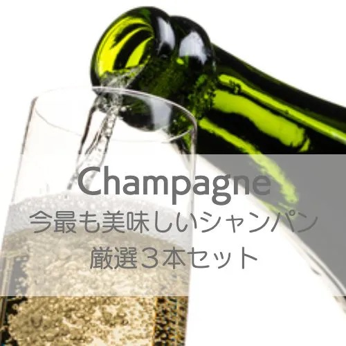 ワインホリックの厳選ワインセット 今最も美味しいシャンパンだけを厳選3本セットでお届け!【ワインセット】