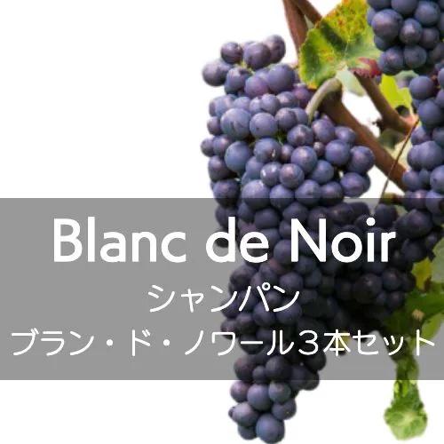 シャンパン、飲み比べブラン・ド・ノワール3本セット【ワインセット】