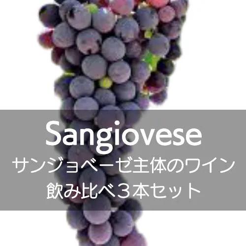 サンジョベーゼ主体のワイン飲み比べ3本セット!【ワインセット】