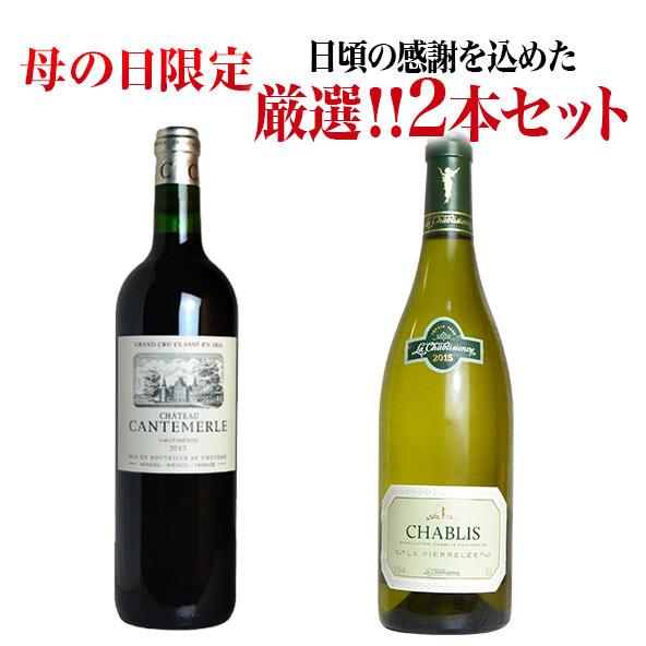 【ご希望の方には無料ラッピング】母の日限定ワインセット 日頃の感謝を込めた究極ワイン赤白2本セットA