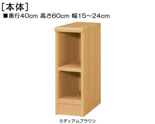 頑丈本箱 高さ60cm幅15~24cm奥行40cm厚棚板(棚板厚み2.5cm)絵本ラック 集会所ボード 幅1cm単位でオーダー たゆみにくい棚板収納 頑丈本箱