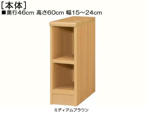 隙間収納 高さ60cm幅15~24cm奥行46cm厚棚板(棚板厚み2.5cm)DVDディスプレイ 図書室収納 幅1cm指定 隙間収納 タフ棚板家具 隙間収納