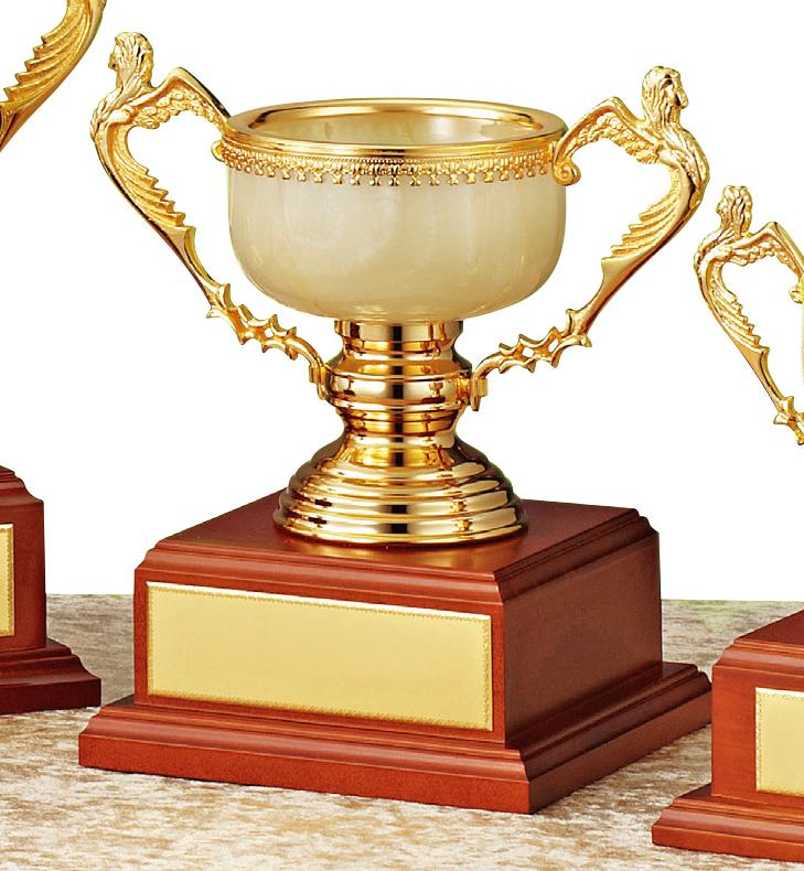 【文字彫刻無料】優勝カップ(C1327C)高さ:25cm/リボン無料/オニックス/ハードケース付き